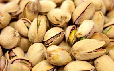 Saiba a importância do controle de pragas de grãos