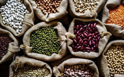 Dedetização de Armazéns: livre-se das pragas de grãos