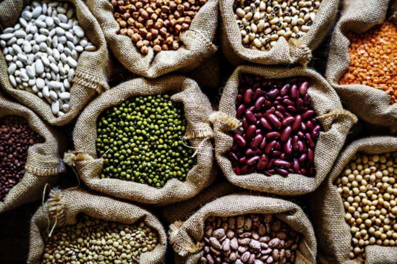 Dedetização de Armazéns: livre-se das pragas de grãos | Prestaserv