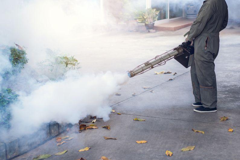 O controle de pragas não pode parar, mesmo em tempos de pandemia!