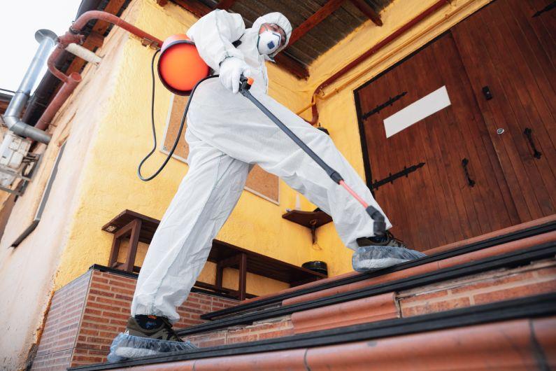 Sanitização para escolas: prepare-se para receber os seus alunos